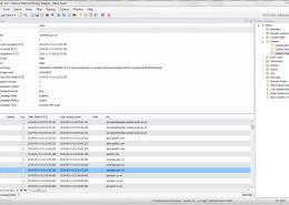 NetAnalysis v2 Cookie Examiner with Google Analytic Cookie