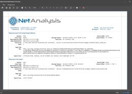 Digital Detective NetAnalysis Detailed Forensic Evidence Report