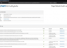 Digital Detective NetAnalysis Page Rebuild Audit Log