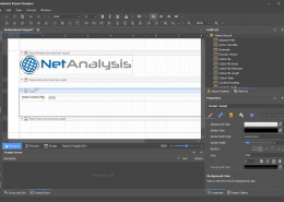 Digital Detective NetAnalysis Report Designer