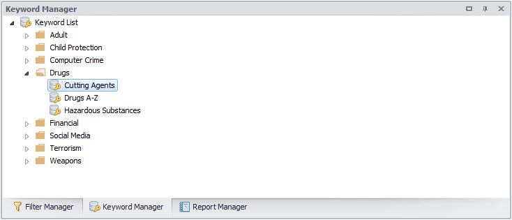 Digital Detective NetAnalysis® showing the keyword manager and keyword lists