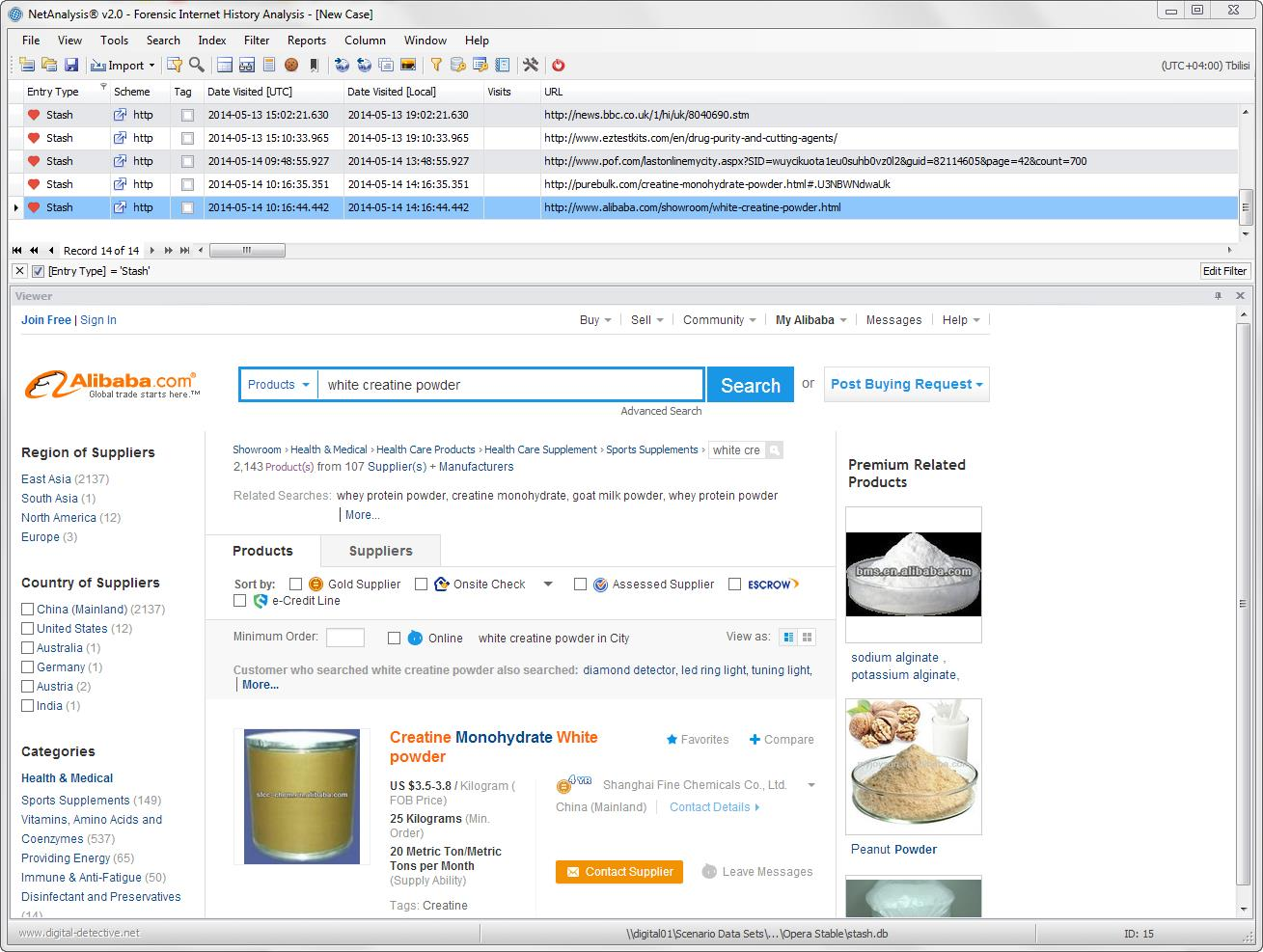 Digital Detective NetAnalysis® showing an Opera Stash entry with web site preview