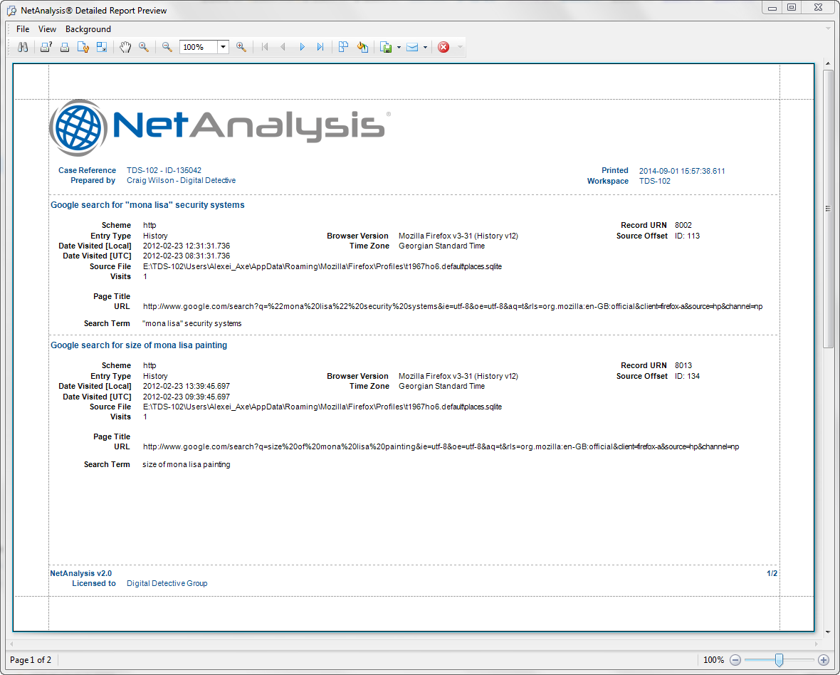 Digital Detective NetAnalysis® report preview screen