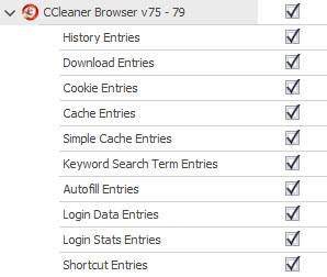 Forensic Recovery Support for CCleaner Browser